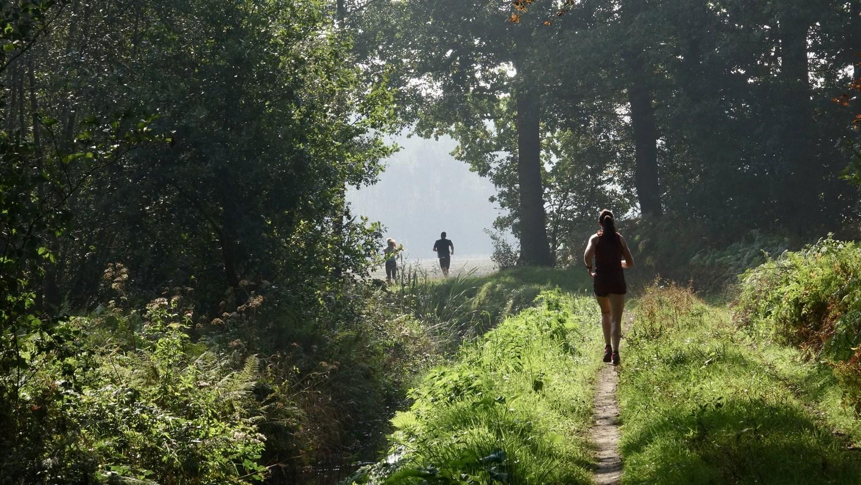 Smokkelen langs de Belgische grens
